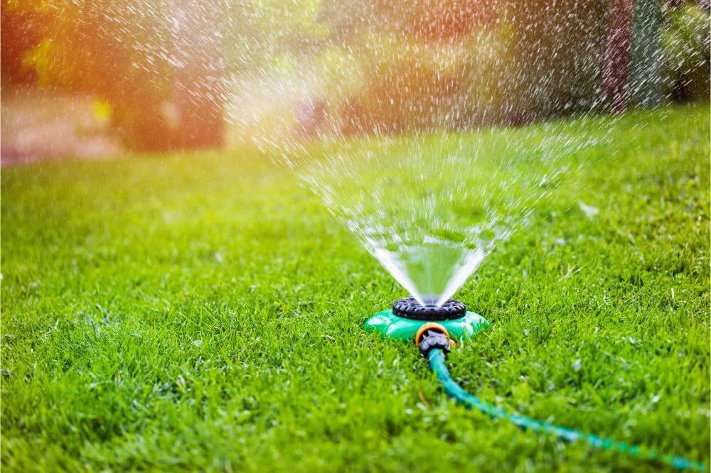Best Garden Sprinkler